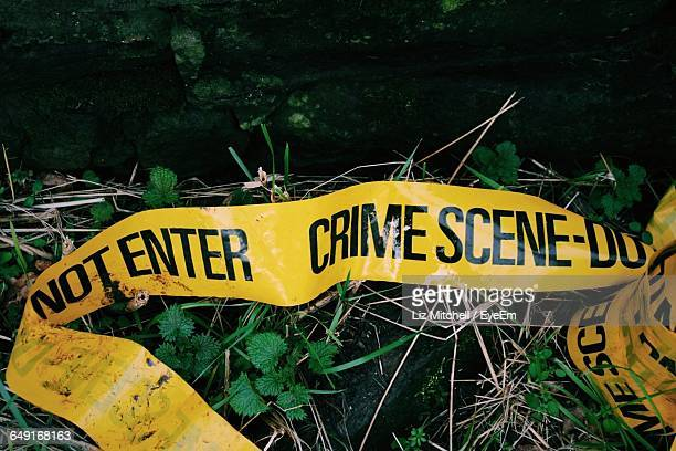 crime scene tape fallen on grass - crime stock pictures, royalty-free photos & images