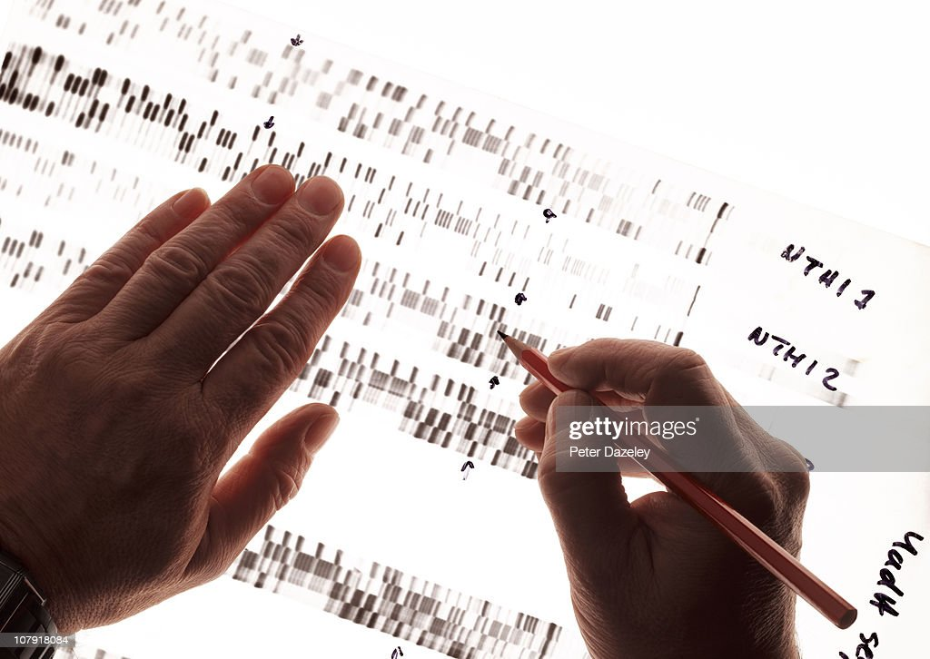 Criminologist studying DNA : Stock Photo