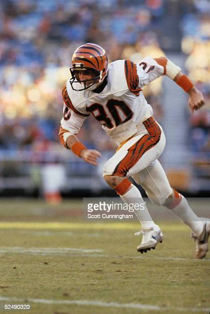 Cris Collinsworth of the Cincinnati Bengals runs a route against the Atlanta Falcons during a game on December 20 1981 at AtlantaFulton County...