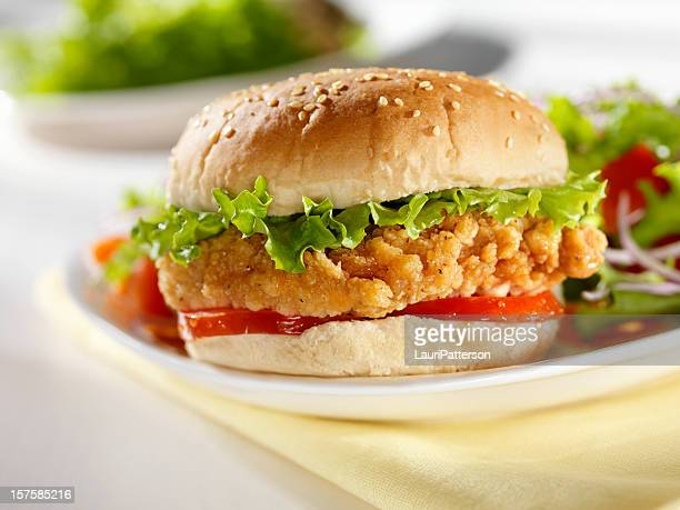Crispy Chicken burger with a side Salad
