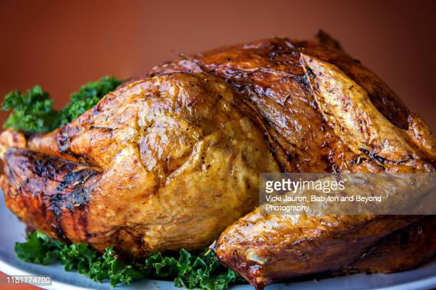 crispy close up of a whole turkey ready for thanksgiving meal - crunchy stock pictures, royalty-free photos & images