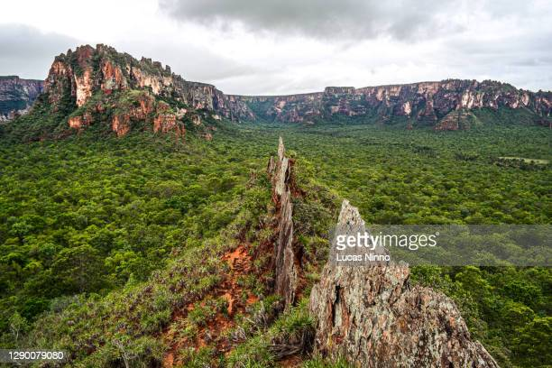 """""""crista do galo"""" - (rooster crest) - rock formation in chapada dos guimarães - named wilderness area stock pictures, royalty-free photos & images"""