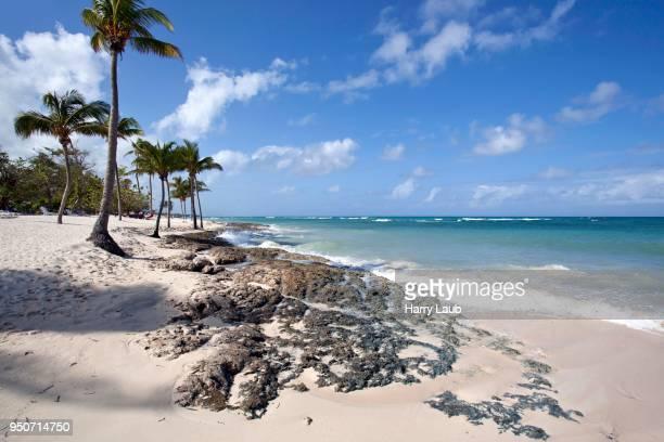 Cristal blue sea and palm trees on the beach Playa Guardalavaca, Holguin Province, Cuba