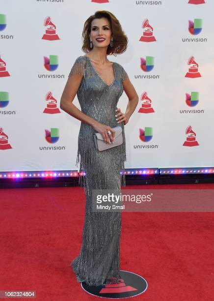 Cristina Bernal attends the 19th annual Latin GRAMMY Awards at MGM Grand Garden Arena on November 15 2018 in Las Vegas Nevada