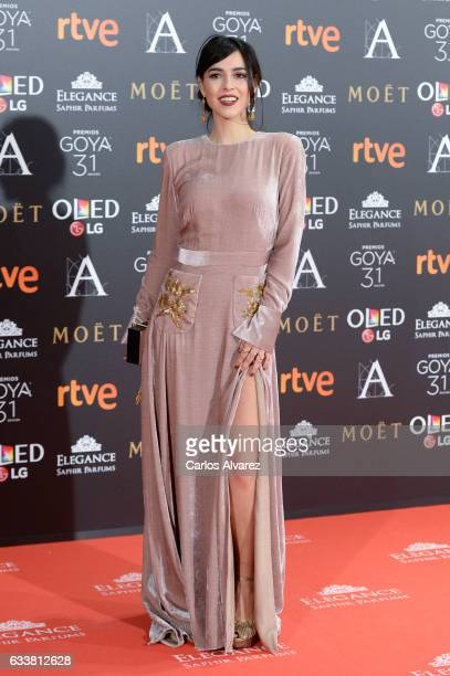 Cristina Brondo attends Goya Cinema Awards 2017 at Madrid Marriott Auditorium on February 4, 2017 in Madrid, Spain.