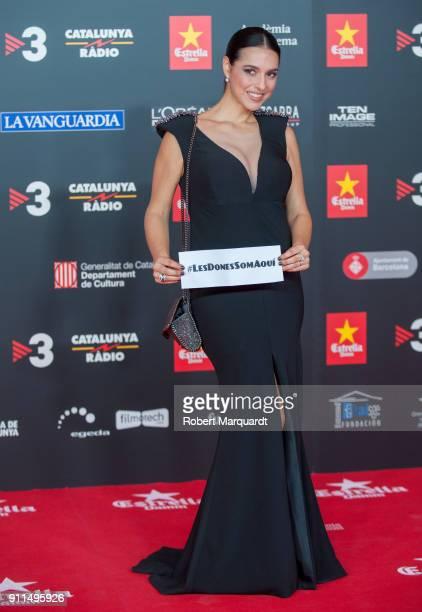 Cristina Brondo attends the Gaudi Awards 2018 at the Forum CCIB Auditori on January 28 2018 in Barcelona Spain