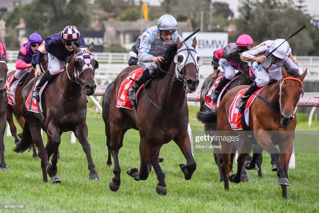 Critical Thinking ridden by Mitchell Aitken wins the Ladbrokes Handicap at Caulfield Racecourse on February 21, 2018 in Caulfield, Australia.