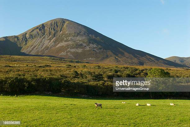 Croagh Patrick the highest peak in Ireland at 2510 feet or 765 meters is also the holy mountain where Saint Patrick is said to have spent 40 days...