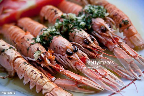 Croatia, Brac, Sumartin, Cooked scampi with garlic parsley