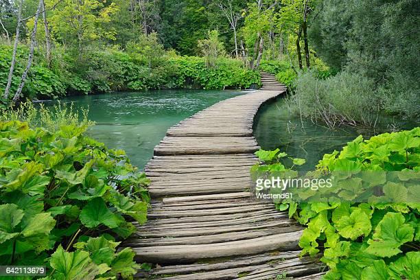 Croatia, Karlovac, Wodden boardwalk in Plitvice Lakes National Park