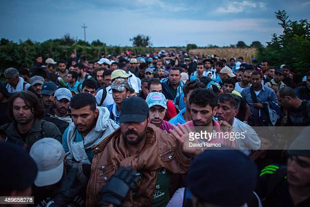 Croatian riot police officers control migrants as they board buses towards a refugee transit camp after crossing the Serbian border into Croatia near...