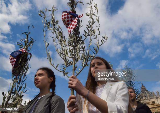 Croatian worshipers holds olive tree branches at the start of the Pope's Palm Sunday mass on April 14 2019 at St Peter's square in the Vatican
