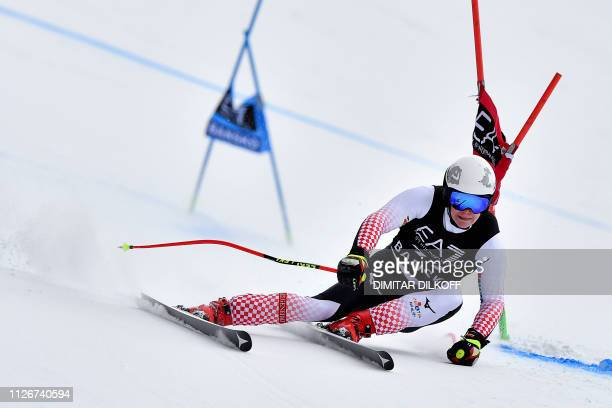 Croatia's Filip Zubcic competes during the men's SuperG combined event of the FIS Alpine Ski World Cup in Bansko on February 22 2019