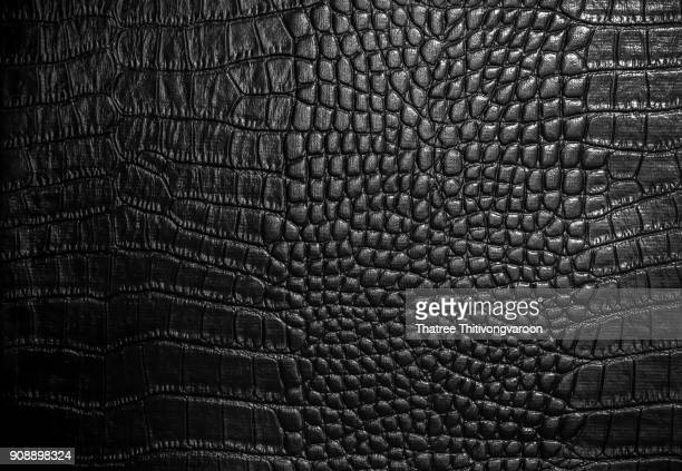 crocodile leather texture closeup background - black purse stock pictures, royalty-free photos & images