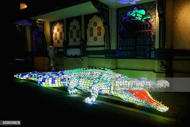 A crocodile light sculpture is seen during a media preview of Vivid Sydney illuminated displays at Taronga Zoo on May 24 2016 in Sydney Australia...