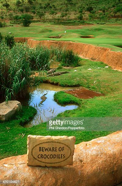 A crocodile pit on the thirteenth hole of the Lost City Course at the Sun City Golf Club South Africa 30th October 2001