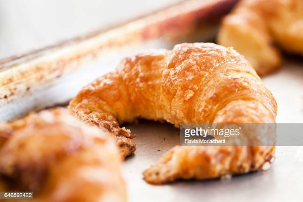 croissant - enfoque diferencial fotografías e imágenes de stock