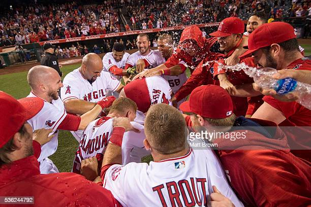 J Cron of the Los Angeles Angels of Anaheim is mobbed at home plate by his teammates after hitting a walkoff tworun home run to defeat Detroit Tigers...
