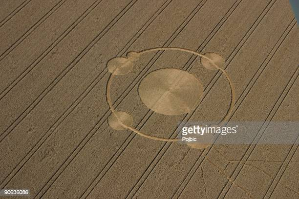 crop circles in the field of wheat - crop circle stock pictures, royalty-free photos & images