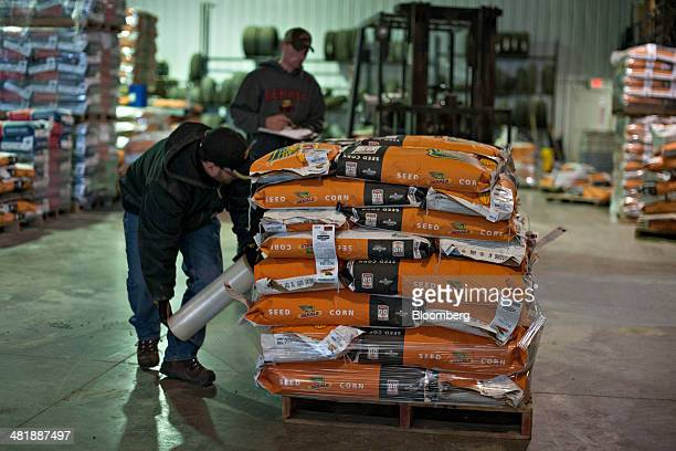 Crop consultants Jim Donnelly left and Kyle Anderson sort Monsanto Co DeKalb brand seed corn at the Crop Production Services warehouse in Manlius...