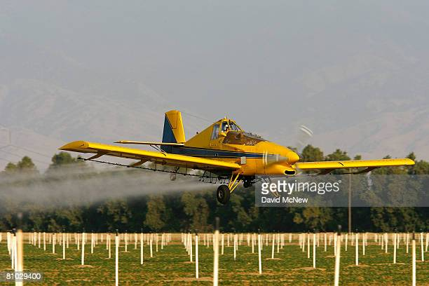 A crop duster airplane sprays Lanate a powerful organophosphate pesticide banned in most European countries on cotton and potato fields on May 7 2008...