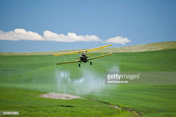 Crop Duster Spraying Wheat Field
