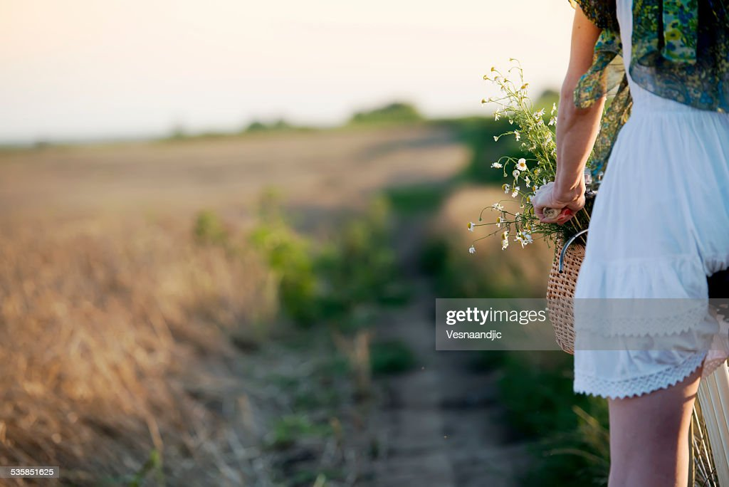 Crop of woman driving bicycle through field of wheat : Stock Photo