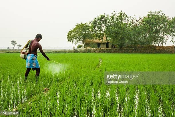 Crop protection pesticide spray