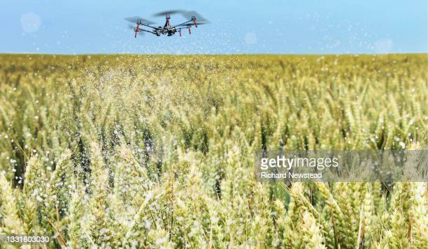 crop spraying drone - robot stock pictures, royalty-free photos & images