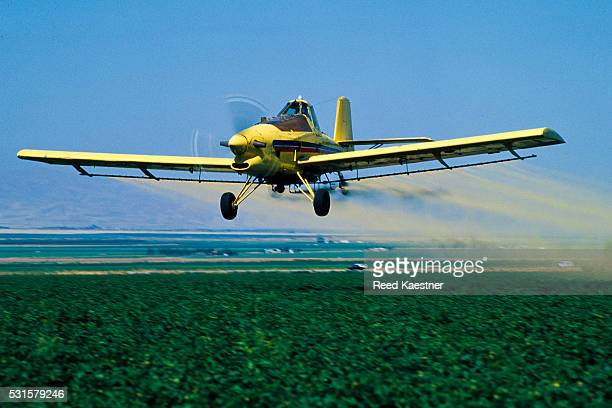 crop-duster plane - crop sprayer stock pictures, royalty-free photos & images