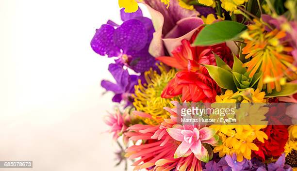 Cropped Close-Up Of Multi Colored Flowers In Bouquet Against White Background