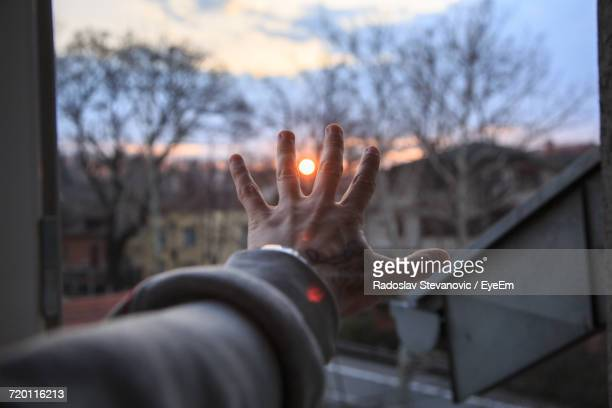 cropped hand against bare trees during sunset - long sleeved stock pictures, royalty-free photos & images