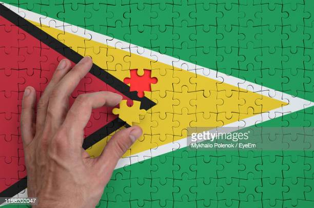 cropped hand arranging jigsaw pieces of guyana flag - guyana stock pictures, royalty-free photos & images