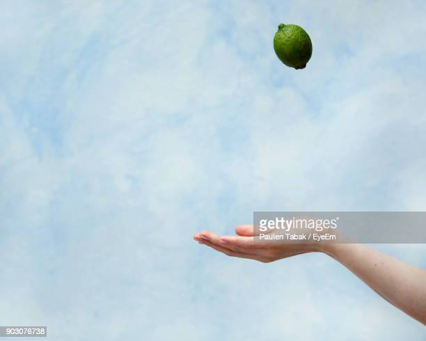 cropped hand catching lime against cloudy sky - paulien tabak stockfoto's en -beelden