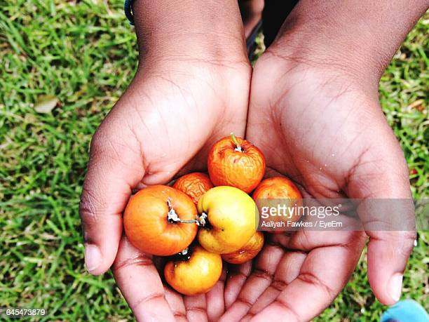 Cropped Hand Holding Berries On Grassy Field