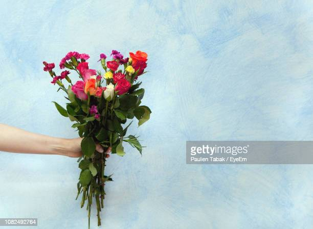 cropped hand holding bouquet against wall - paulien tabak stock pictures, royalty-free photos & images