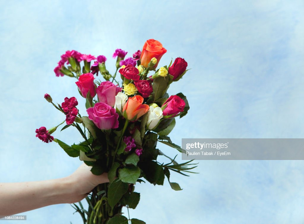 Cropped Hand Holding Bouquet Against Wall : Stockfoto