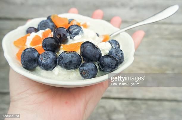 Cropped Hand Holding Bowl Of Apricots And Blueberries With Cottage Cheese