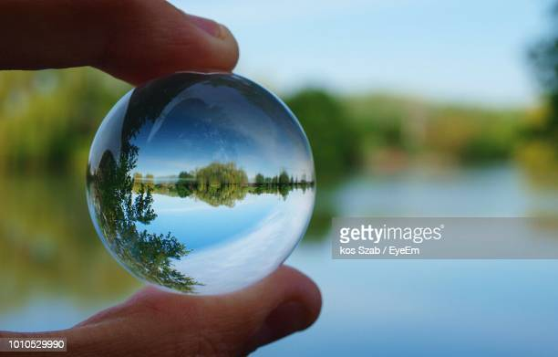 cropped hand holding crystal ball against trees - image focus technique stock pictures, royalty-free photos & images