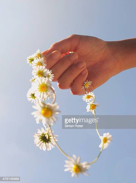 Cropped hand holding daisy chain