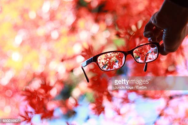 Cropped Hand Holding Eyeglasses Against Autumn Trees