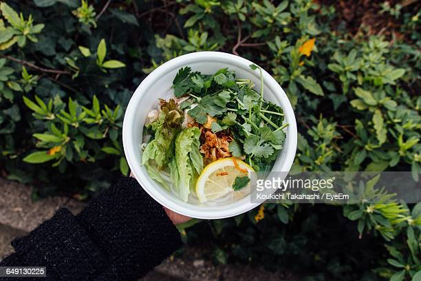Cropped Hand Holding Food Bowl Over Plants