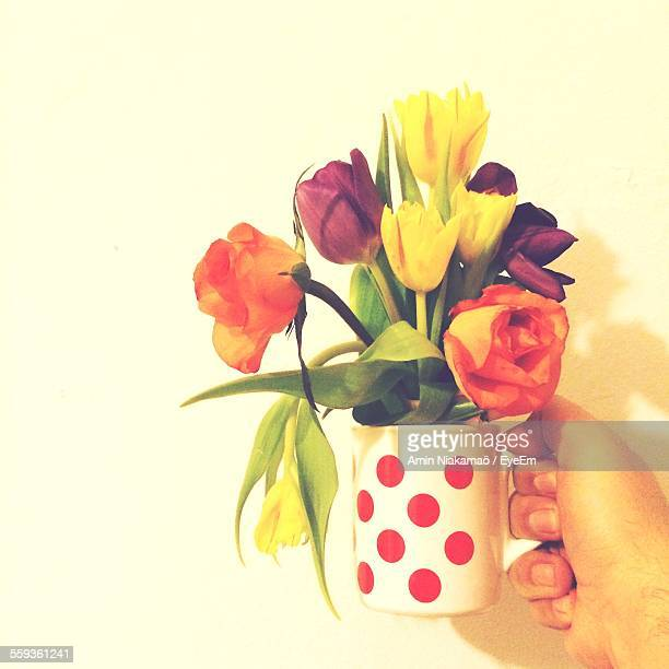 Cropped Hand Holding Polka Dot Mug Filled With Tulips And Roses