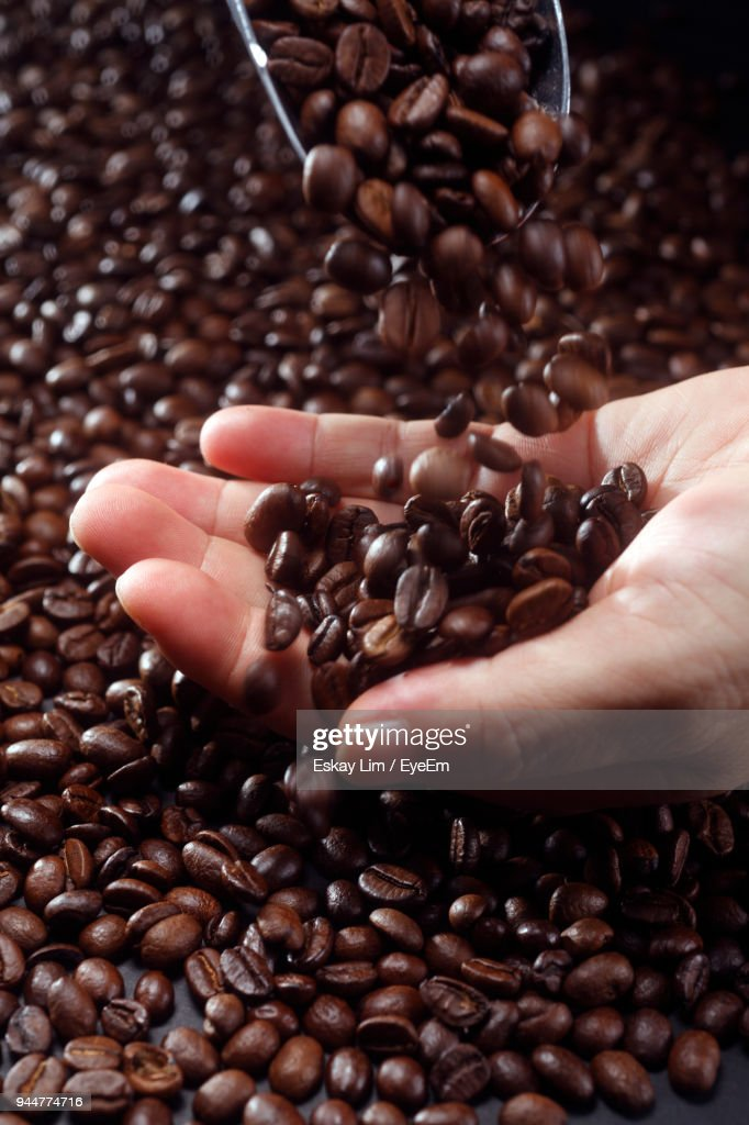 Cropped Hand Holding Roasted Coffee Beans : Stock Photo