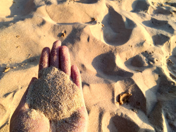 Cropped Hand Holding Sand At Beach