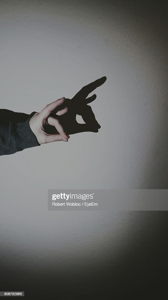 Cropped Hand Making Shadow Puppet On Wall : Stock Photo