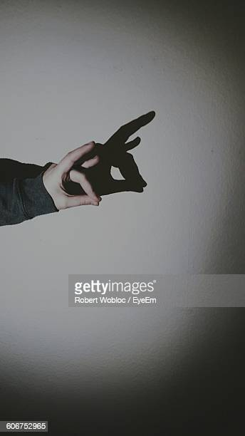 cropped hand making shadow puppet on wall - shadow puppet stockfoto's en -beelden