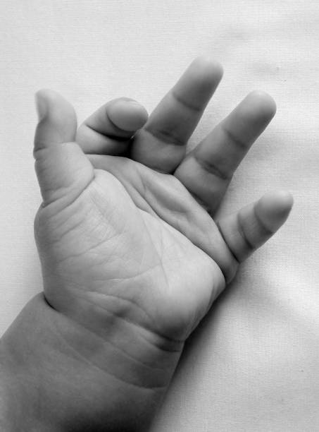 Cropped Hand Of Baby
