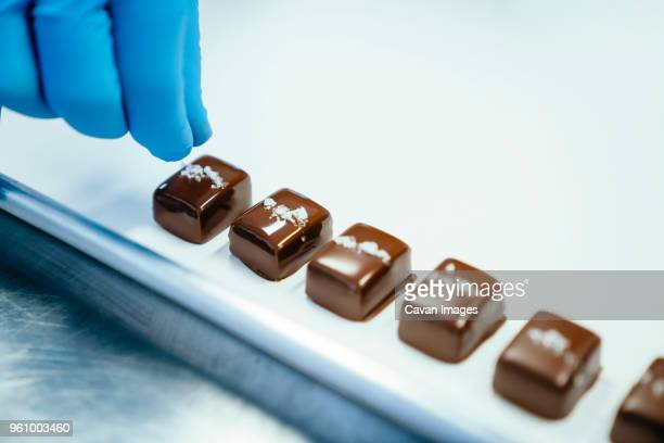 cropped hand of chef garnishing chocolate pieces in tray at factory - chocolate factory stock photos and pictures