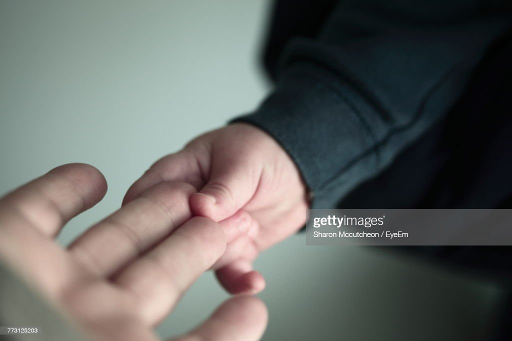 Cropped Hand Of Child Holding Parent Hand : Photo